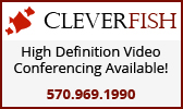 Cleverfish high definition video conferencing