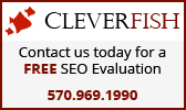 Cleverfish seo search engine optimization